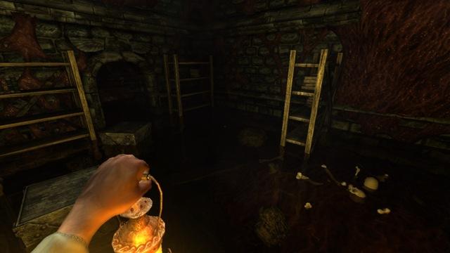 Amnesia - The Dark Descent 02