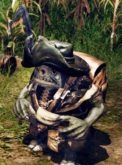 Pirata Gnomo