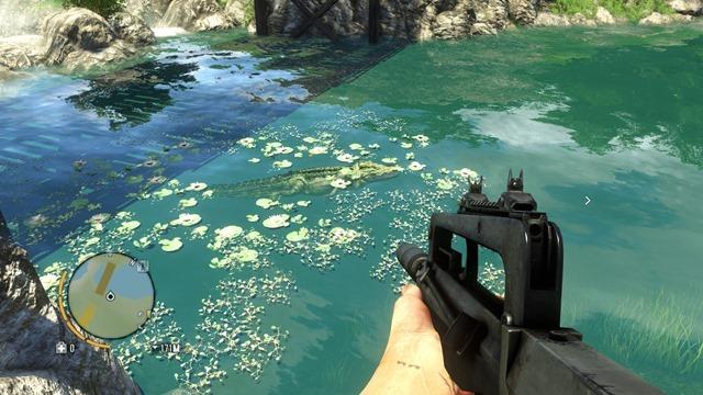 Far Cry 3 05