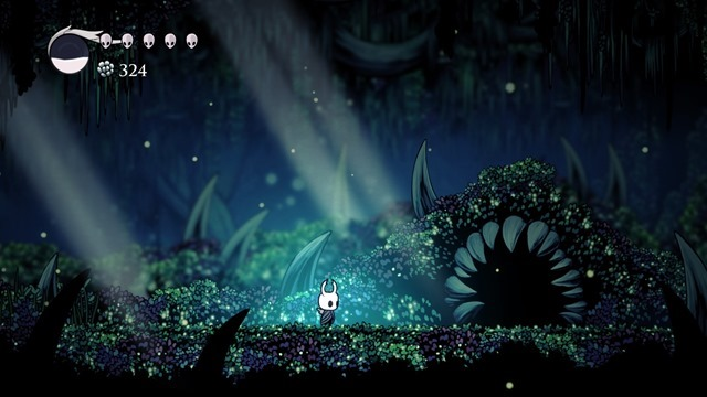 Hollow Knight 11
